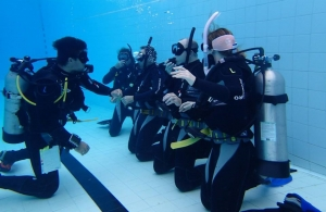 Start Here with The PADI Open Water Course
